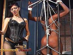 Big Butts, Femdom, Mistress, Spanking